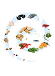 LA ALIMENTACIÓN ESPAÑOLA. Características nutricionales de los principales alimentos de nuestra dieta